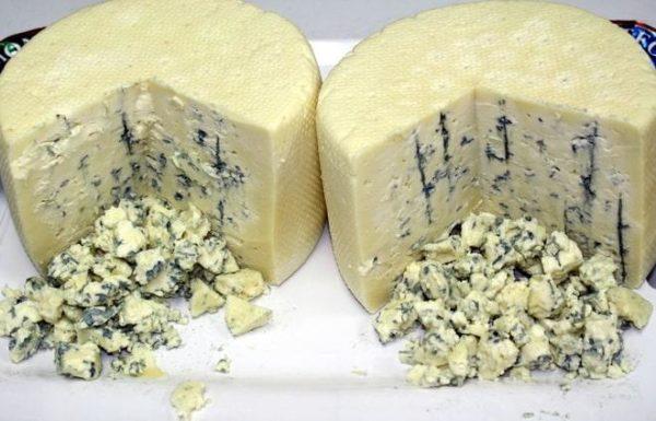 Как выглядит сыр