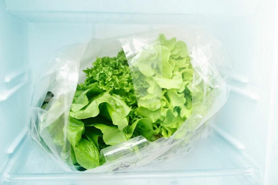 Как замораживать листья салата на зиму в морозильной камере