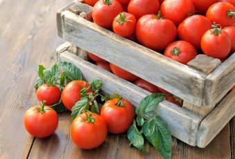Как правильно хранить свежие помидоры