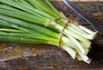 Как сохранить зеленый лук свежим на зиму