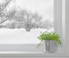 Увлажняем воздух в комнате без увлажнителя зимой